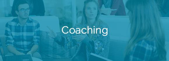 Collezione coaching small