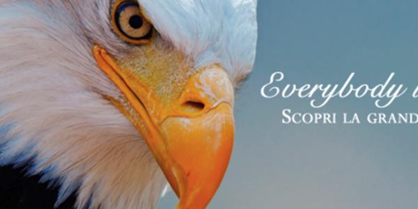 Home copertina evergreen social academy
